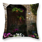 Floral Adorned Doorway Throw Pillow