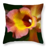 Floral Art - Intimate Orchid 3 - Sharon Cummings Throw Pillow