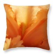 Floral Art Orange Iris Flower Sunlit Baslee Troutman Throw Pillow