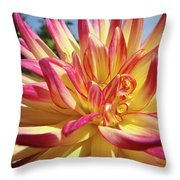 Floral Art Prints Bright Dahlia Flower Canvas Baslee Troutman  Throw Pillow