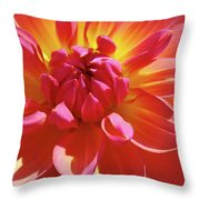 Floral Art Prints Orange Pink Dahlia Flower Baslee Troutman Throw Pillow