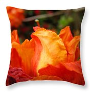 Floral Art Prints Orange Rhodies Rhododendrons Baslee Troutman Throw Pillow