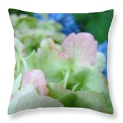 Floral Artwork Hydrangea Flowers Soft Nature Giclee Baslee Troutman Throw Pillow