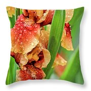 Floral Bearded Iris With Rain Drops  Throw Pillow