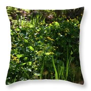 Floral Border Throw Pillow