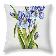 Floral Botanicals-jp3786 Throw Pillow