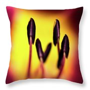 Floral Candle Throw Pillow