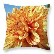 Floral Dahlia Flower Art Print Orange Red Dahlias Baslee Throw Pillow