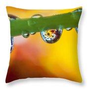 Floral Drop Trio  8054 Throw Pillow