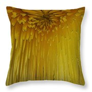 Floral Falls 5 Throw Pillow