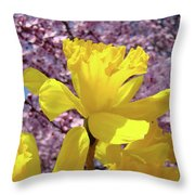Floral Fine Art Daffodils Art Prints Spring Flowers Sunlit Baslee Troutman Throw Pillow