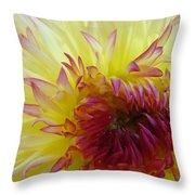 Floral Fine Art Dahlia Flower Yellow Red Prints Baslee Troutman Throw Pillow