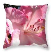 Floral Fine Art Prints Pink Rhodie Flower Baslee Troutman Throw Pillow