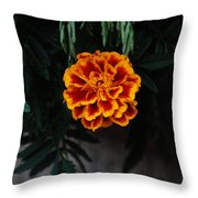 Floral Fire Throw Pillow