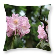 Floral Garden Pink Rhododendron Flowers Baslee Troutman Throw Pillow