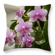 Floral Hangup Throw Pillow