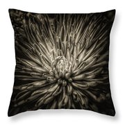 Floral In Sepia 1 Throw Pillow