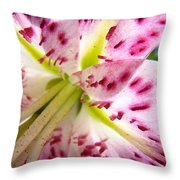 Floral Lily Flower Artwork Pink Calla Lilies Baslee Troutman Throw Pillow