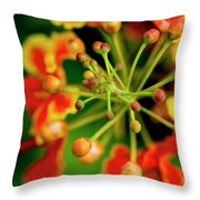 Floral Macro Throw Pillow