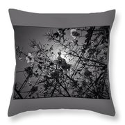 Floral Noon Throw Pillow
