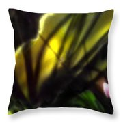 Floral Rays Throw Pillow