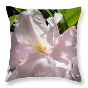 Floral Rhdodendron Flower Art Print Pink Sunlit Rhodies Baslee Throw Pillow