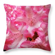 Floral Rhodies Flowers Pink White Art Baslee Troutman Throw Pillow