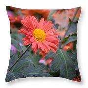 Floral Smiles Throw Pillow