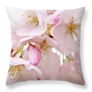 Floral Soft Pink Blossoms Spring Art Baslee Troutman Throw Pillow