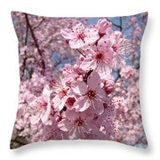 Floral Spring Art Pink Blossoms Canvas Baslee Troutman Throw Pillow