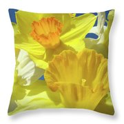 Floral Spring Garden Art Prints Yellow Daffodils Flowers Baslee Troutman Throw Pillow