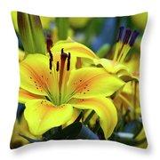 Floral Sunshine Throw Pillow