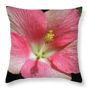 Floral Symphony In Pink Throw Pillow