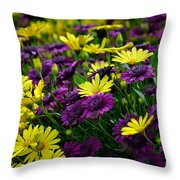 Floral Treasure Throw Pillow