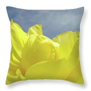 Floral Yellow Iris Flowers Blue Sky Baslee Troutman Throw Pillow