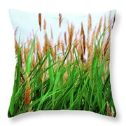 Floral2 Throw Pillow