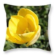 Floriade 8 Throw Pillow