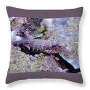 Florida Alligator Sunning Throw Pillow
