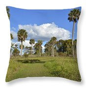 Florida At Its Finest Throw Pillow