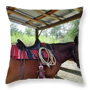 Florida Cracker Horse Throw Pillow