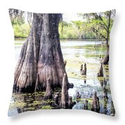 Florida Cypress, Hillsborough River, Fl Throw Pillow
