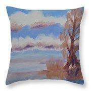 Florida Cypress Throw Pillow