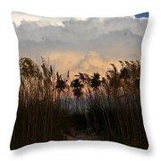 Florida Dunes Throw Pillow