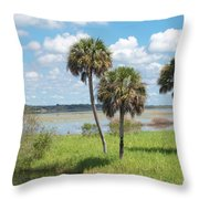 Florida Essence - The Myakka River Throw Pillow
