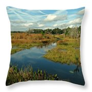 Florida Fall Throw Pillow