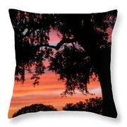 Florida Firesky Throw Pillow