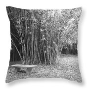 Florida Garden Scene_010 Throw Pillow