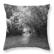Florida Garden Scene_011 Throw Pillow