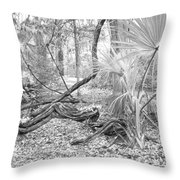 Florida Garden Scene_012 Throw Pillow