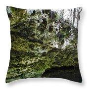 Florida Grotto Throw Pillow